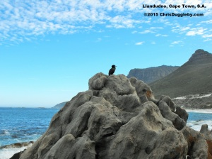 Scenes from around Llandudno near Cape Town from ChrisDugglebydotcom 111