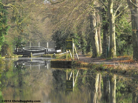 Bridge Reflections over Surrey Canal
