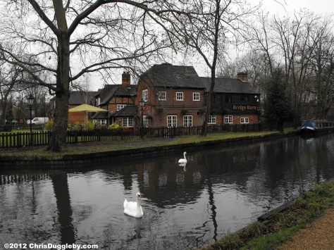 English Pub and Swans by Surrey Canal