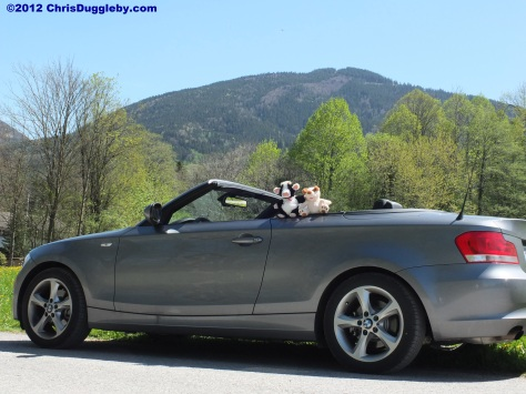 Uddele the Singing Cow Visits RISKKO in her Convertible