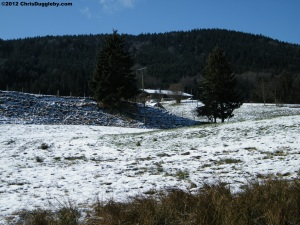 Snow Back for April in Heidi Land