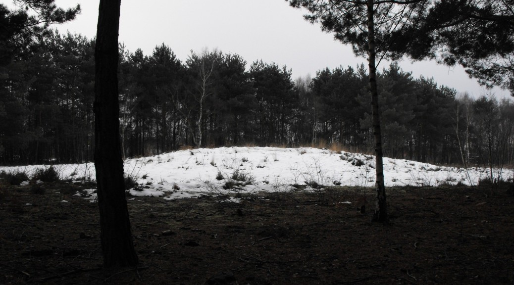 Close up of Woking's Prehistoric Burial Mound in Horsell Common