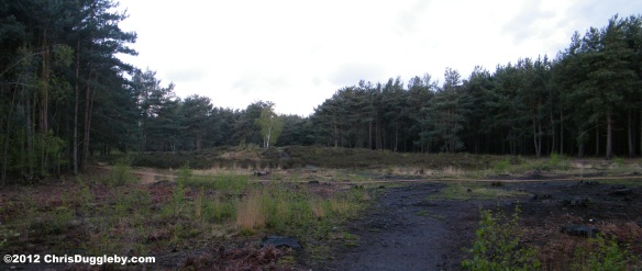 Largest Prehistoric Burial Mound in Horsell Common