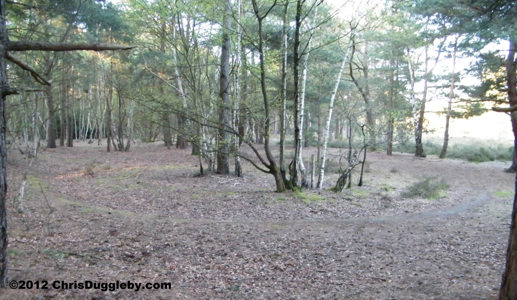 Fourth Prehistoric Burial Barrow in Horsell Common