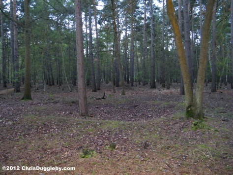 Horsell Common Smaller Ring Structure Near Large Barrows