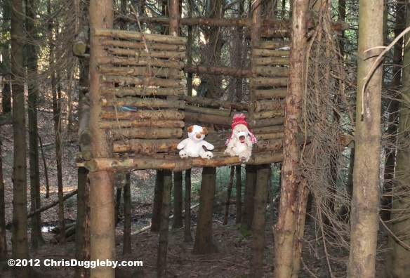 Vali Umm and RISKKO take a rest from tree house building