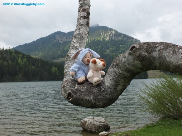 RISKKO and Robin Huddy on a tree at Spitzingsee