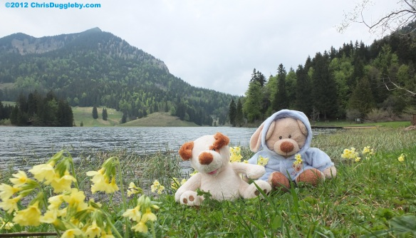 RISKKO and Robin Huddy playing in the spring flowers near the Spitzingsee
