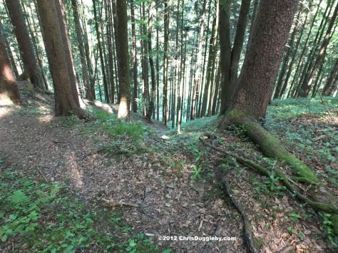 Looking down the Armen Seelenweg