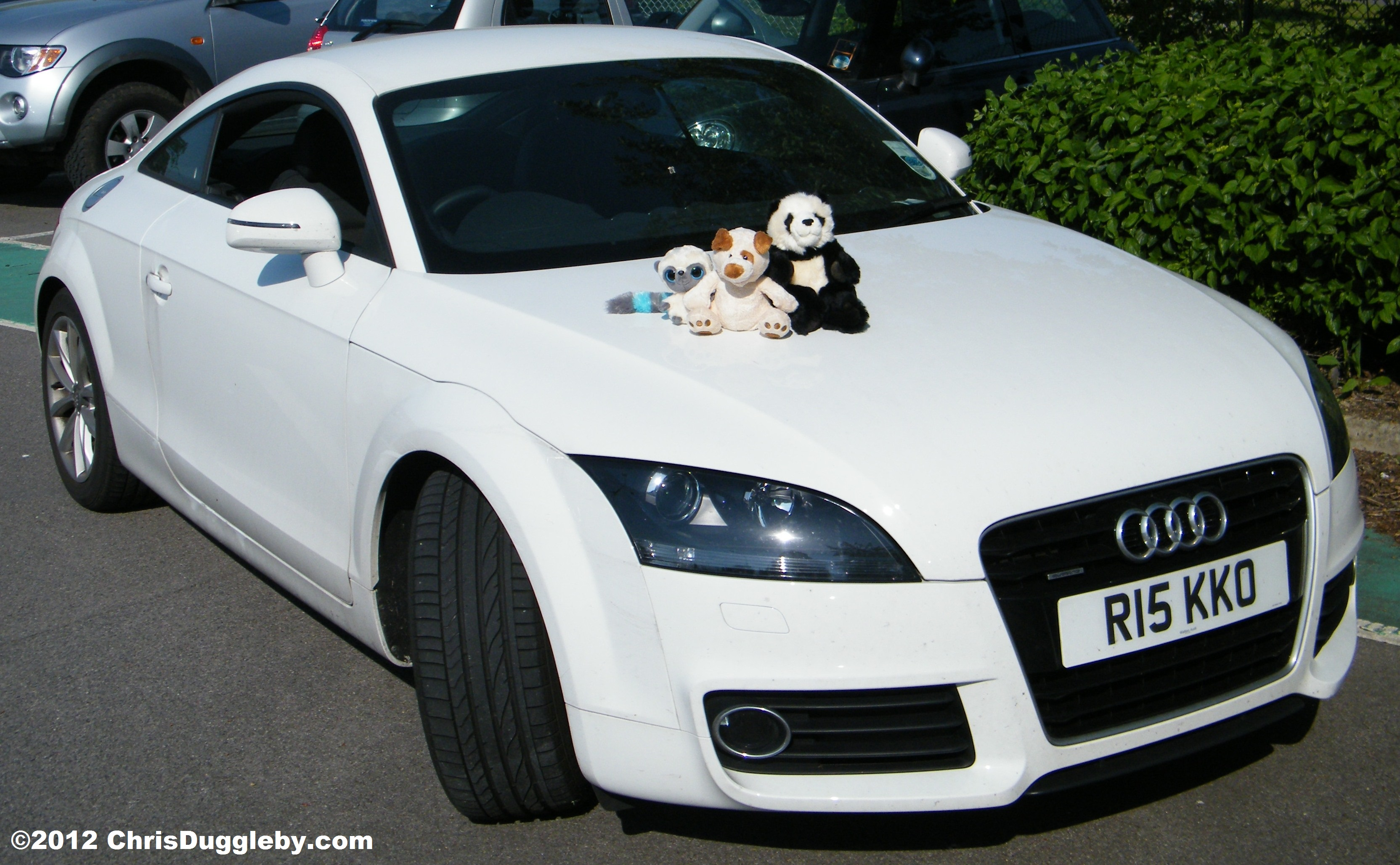 Once Upon A Time There Was A Famous Rapping Dog With A White Sports Car.