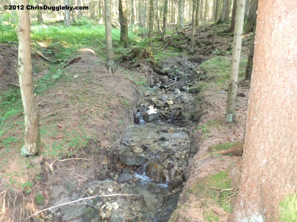 The path to the Schwarzenberg continues to follow the mountain stream through the forest