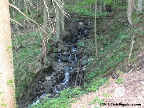 If you like forest waterfalls the challenges of the difficult path are worthwhile