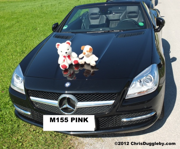 Pink Lips having fun with RISKKO the Dog on her Topless Convertible Mercedes