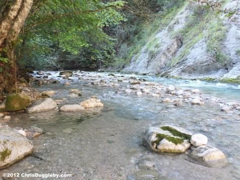 Countryside stream in the Austrian Tyrol not far from German Bayrischzell