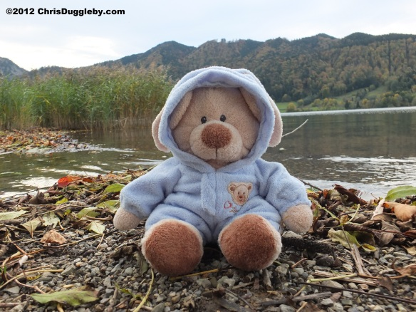 In Autumn sensible teddy bears like Robin Huddy wrap up warm on the beach