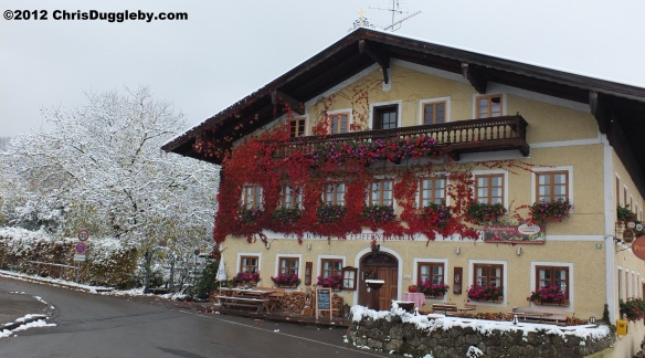 And this is how the Pfeiffenthaler looks after the first snow - still in bloom in October week 3