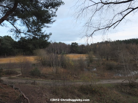 "Horsell Common sand pits where H G Wells' Martian Invaders Landed in ""War of the Worlds"""