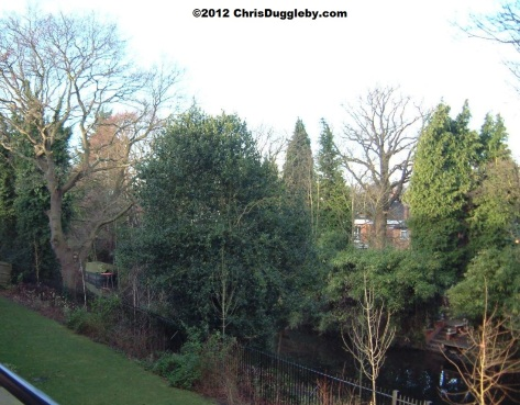 View of the Basingstoke Canal looking out to the left of my balcony in Winter