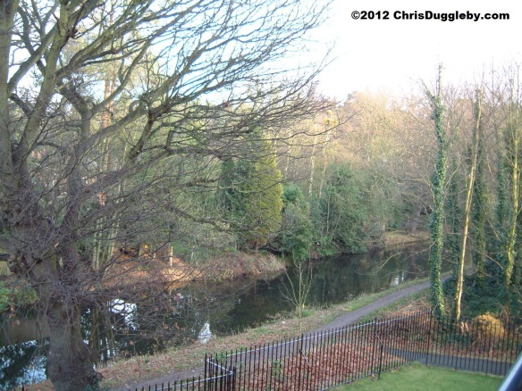 View of the Basingstoke Canal looking out to the right of my balcony
