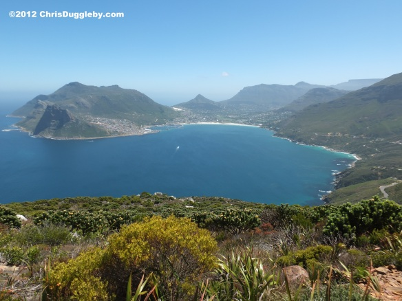 The view that accompanies the amazing wild flowers growing around Chapmans Peak