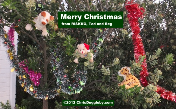 An African Merry Christmas from three wild,crazy, and almost ferocious, animals