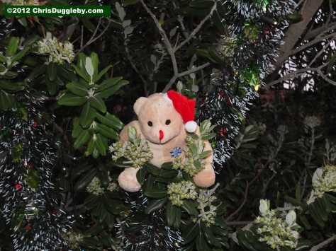 Ted decides where to put the tinsel on the Christmas Tree