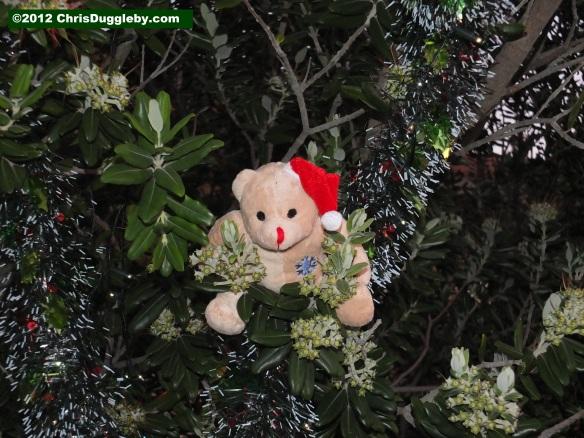 Perverse Animal Behaviour Around Christmas Tree | Chris Duggleby