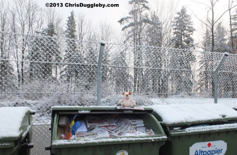 Environmentally friendly dog RISKKO. Recycling doesn't stop just because the weather is cold!