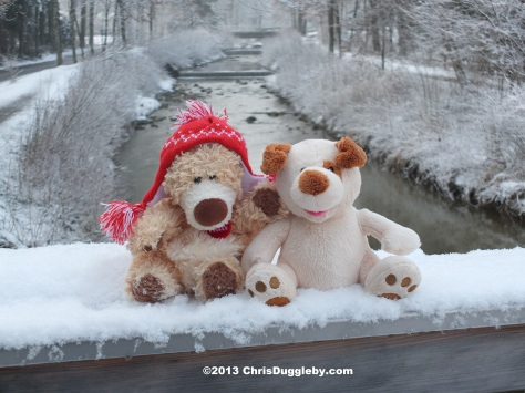 RISKKO enjoys the April snow in the Alps with his friend the Alpine Bear.