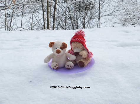 RISKKOs sledge was just big enough for one dog and a small alpine bear: time for fun on the snow covered slopes.