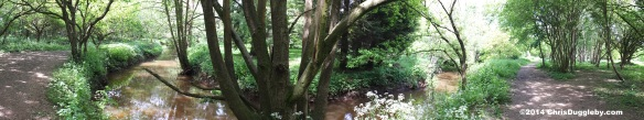 Panoramic View of the bend in Hoebridge Stream on path from Woking Park