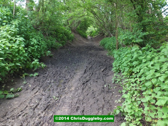 Be Prepared for Mud On the Bridleway
