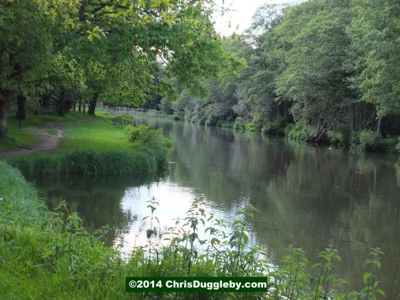 River Wey Near To Walsham Lock