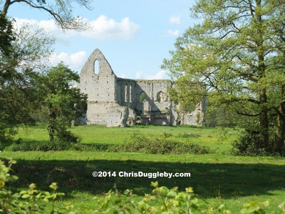 Newark Augustinian Priory Ruins From River Wey