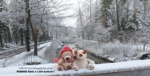 3 RISKKO gets a cold bottom sitting on a bridge in Bad Feilnbach Bavaria
