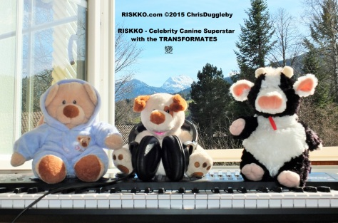 Some of the team that help with the Transformates 變 Recordings in the Alps
