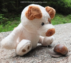 RISKKO tries to pursuade an Alpine Snail to stay in the Forest