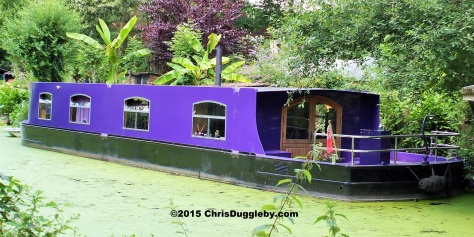 Canal Boat Home 5 along the Basingstoke Canal