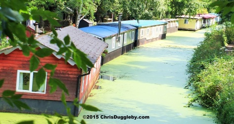 Canal Boat Homes along the Basingstoke Canal