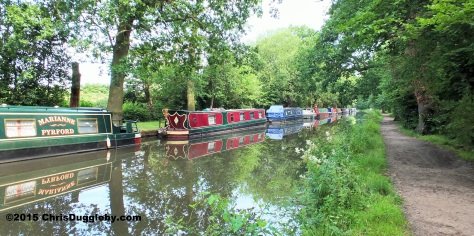 Canal Boats on the River Wey Navigation Waterway