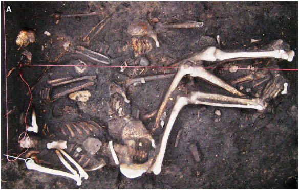 Brandenburg. Germany - Remains of 3 soldiers from Thirty Years' War (1618-1648)