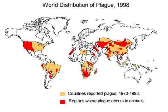 World distribution of plague in people and animals - 1998