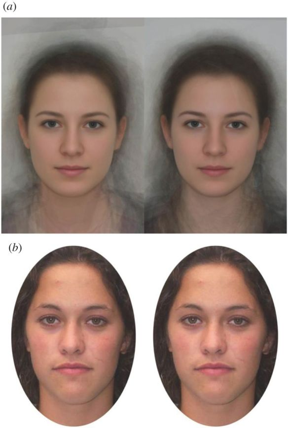 Facial Cues to Ovulation in Women (Photo: Lobmaier, Bobst and Probst)