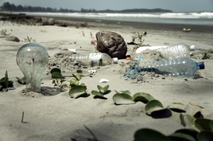 Plastic pollution on the beach (including PET bottles)