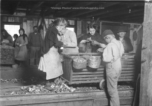 Little Nettie and other young Oyster Shuckers at Alabama Canning Co., Bayou, La Batre, USA (1911)