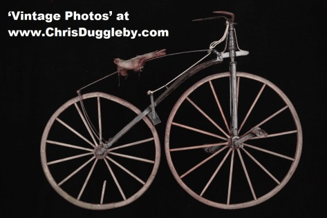 The Michaux Velocipede Was Popular From 1867 to 1869. Then It Was Superseded By The 'Ordinary' or Penny Farthing