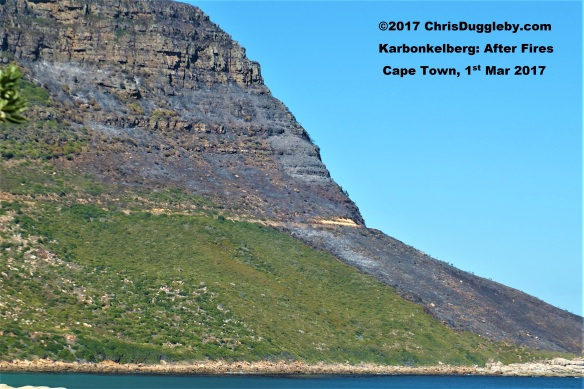 Closer view of Karbonkelberg Mountain 2 days after bush fires