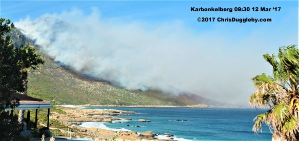 0 Hout Bay Burns See Photo Blog Article Sensational Images of Blazing Cape Town Mountain at ChrisDugglebydotcom DSCF3753 (2)