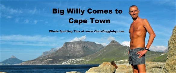 00-big-willy-comes-to-sandy-bay-llandudno-cape-town-whale-spotting-tips-from-blog-at-chrisdugglebydotcom