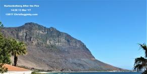 16 Grey Karbonkelberg After Massive Bush Fire See Photo Blog Article Sensational Images of Blazing Cape Town Mountain at ChrisDugglebydotcom DSCF4020 (2)
